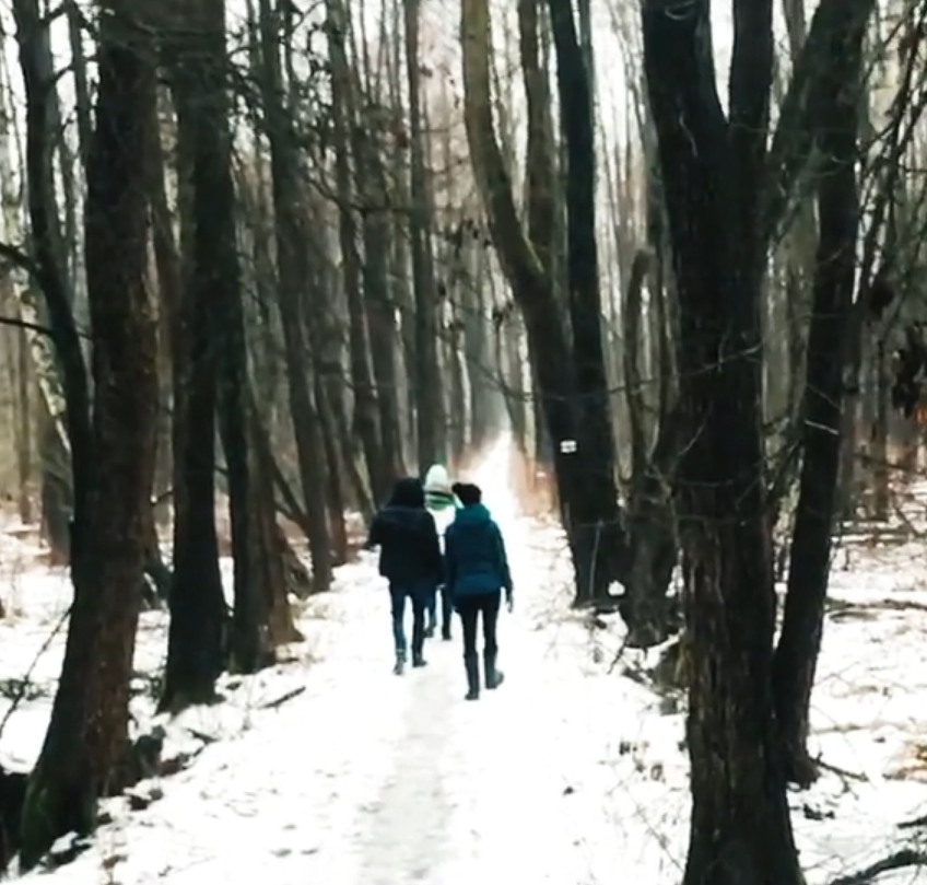 Video: Winter walk.